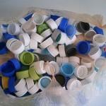 ペットボトルキャップ収集