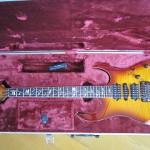 Newギター買った